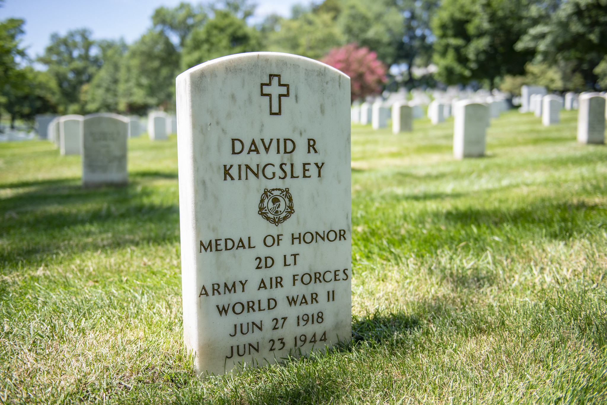 david r kingsley grave marker